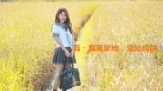 桃源小农女夏小麦小说最新章节完整版在线阅读