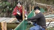 为丰收在鱼塘边做防护栏