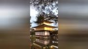 京都金閣寺走一走
