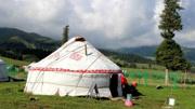 为什么西藏路边的白色帐篷,千万不能进去?看完才知其猫腻