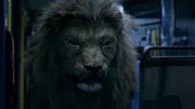 电影《狂暴凶狮》终极预告