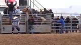 步步驚心,斗牛士每一秒都在玩命!