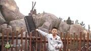 上海迪士尼游樂項目故障 游客被困懸空近半小時
