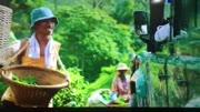 韩国人看《湄公河行动》,左边女主持看最认真,如何评价这部剧呢