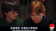 電影《哈利波特與魔法石》片段插曲之 動物園蛇出沒