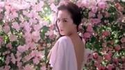 知性美女刘涛亲情代言美颜秘笈果感香芬系列洗发水