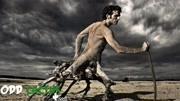 男子穿越到了几十万年后,发现人类已被圈养,成了兽人的食物