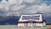 去西藏旅游,看到这种白色帐篷不要随便进,尤其是单身男性