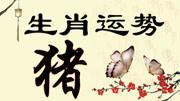 李居明2019年屬豬運程