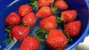 草莓還能這樣切!只要10秒鐘,草莓變玫瑰,一看就會!超好看!