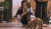 《狗十三》:16歲的張雪迎,中國版青春殘酷物語