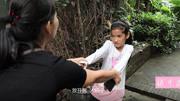 男童爬栏杆掉进猩猩园遭拖行 动物园击毙猩猩