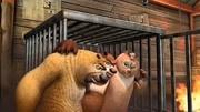 熊出沒之奪寶熊兵  熊大熊二燒烤