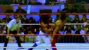 1988.1.24.WWF.Royal.Rumble.皇家大战