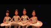 經典芭蕾舞 天鵝之死