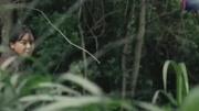 潘粤明主演的《鬼吹灯之怒晴湘西》2分钟告诉你?#21368;?#22909;看?
