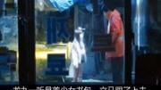 3分钟看完女孩每天都被折磨的日本彩立方平台登录《7个房间》