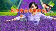 精選入門32步廣場舞《風中有朵雨做的云》舞步簡單好看又好學!