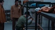 反貪風暴3:副部級領導貪污一百億,指示情婦前往香港把錢洗干凈