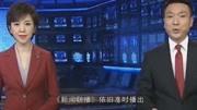 鲁豫问康辉,新闻联播整稿子时在聊什么?他的回答笑翻众人