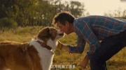 劉憲華改編獻唱《一條狗的使命2》推廣曲 唱哭影迷