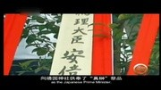 日本逐渐失控 美日韩内部矛盾升级