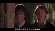 樂高大電影哈利波特2