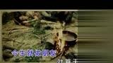 正義之道 (《民兵葛二蛋》電視劇主題曲)(1)