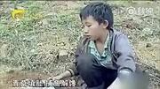 广西卫视第一书记 杨六斤:青草填肚 捕鱼解馋