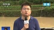 現場:湖南古丈縣普降暴雨引發山體滑坡