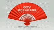 王上海视广告企业形象宣传片微电影网剧