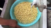 教你在家發黃豆芽,自己做的健康又營養,一點不比市場買來的差!