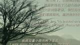 山楂樹之戀插曲-常石磊