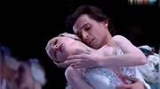 芭蕾舞天鵝湖經典選段[四小天鵝]