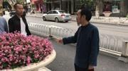 楊公風水天星風水-平原公墓走馬陰陽斷
