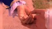 芭比:蝴蝶仙子和王子結婚,中途有愛慕者打擾,婚禮被迫中斷