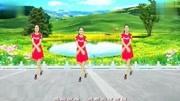 廣場舞《農家女》16步.