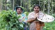 大陆农村妇女性交视频_农村人在闹市1关注的视频-农村人在闹市1上传的视频