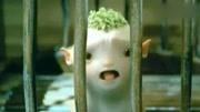"""《捉妖记》白百何喂胡巴""""吃奶""""的方式好奇葩,井柏然又被套路了"""