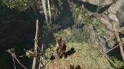 KO酷《古墓麗影10崛起》全劇情流程攻略解說 XBOX游戲
