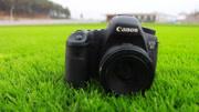 [相机Beta]宾得645z,飞思IQ250,哈苏H5D-50c中幅相机测试Part2