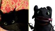 驯龙高手2 (片段)龙族BOSS喜爱龙宝宝的龙族之王