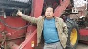 农村大叔投资15000种20亩水塘鸡头子,一年才挣几万块钱你信吗?