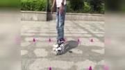 轮滑教程 轮滑初学的滑行以及刹车的简单技巧