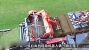 看国外如何铲草皮的,一秒一卷效率惊人,网友:中国环境需要它!