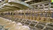 走进美国科勒马桶制造工厂,瞧一瞧顶级卫浴有何不同