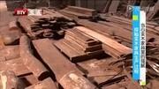 当心实木家具的猫腻 探秘实木家具生产过程