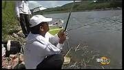 巨物大鱼-化绍新 龙纹鲤搏巨鲢