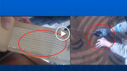 室内设计材料教程:地毯的施工安装方法-齐生设计职业学校